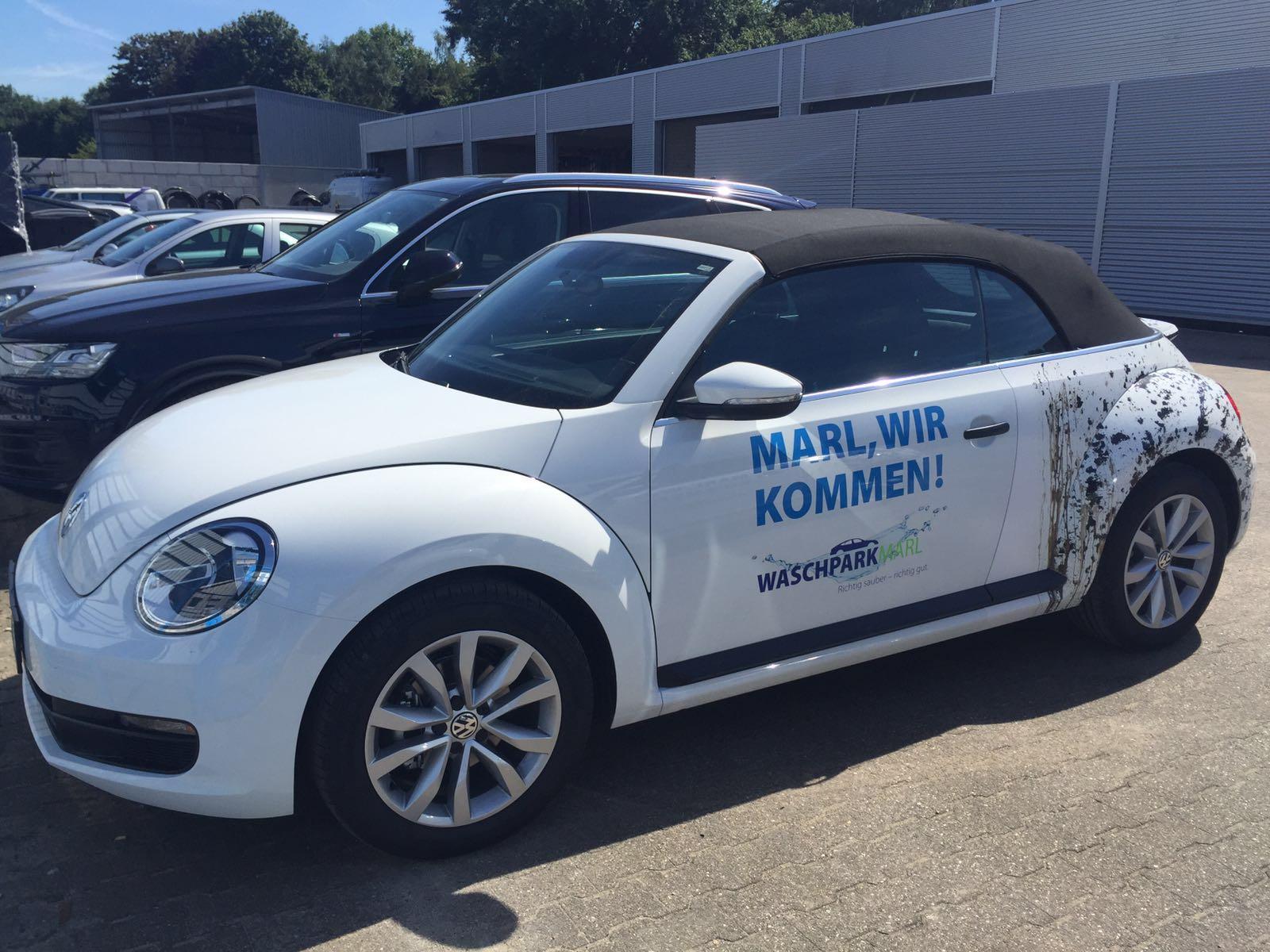 WPM-Beetle